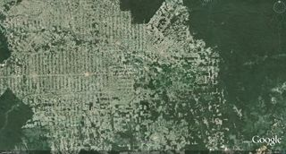 Deforestation of the Amazon Rainforest
